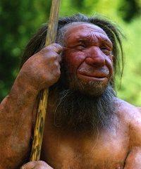 Neanderthalhombre 200x240